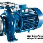 Máy bơm trục ngang Pentax tiết kiệm điện – CM65- 160A